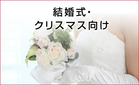 結婚式・クリスマス向け